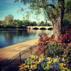 Hyde Park, London.-