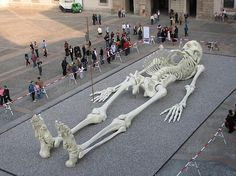 92 feet sculpture in the form of a human skeleton created by Italian Gino De Dominicis and exhibited now at the Museum of Modern Art in Rome. Except for the weird nose detail on sculpture, it is almost entirely identical to the human skeleton.