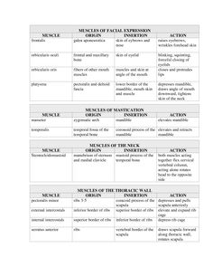 origins and insertions of muscles - Google Search