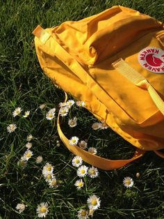 warm yellow kanken and daisies
