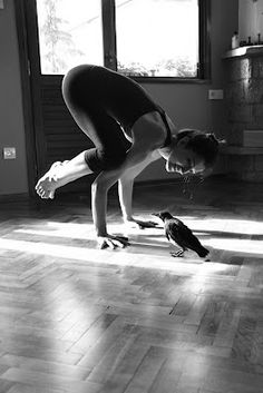 Bakasana with my crow!