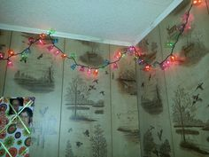 Christmas lights with plastic shot glasses for my daughters room.  Wendy~