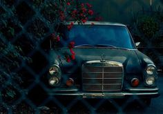 Vintage Mercedes covered in red flowers.