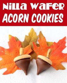 Fall Cookies Decorated Ideas! Fun Acorn Cookies are so irresistibly delicious, it's almost impossible to have just one! They'll be the hit of all of your Fall parties, and are so EASY to make! Here's what you'll need to make yours... Pumpkin Spice Cookie Recipe, Fall Cookie Recipes, Fall Dessert Recipes, Easy Appetizer Recipes, Fall Desserts, Pumpkin Recipes, Fall Recipes, Fall Cookies, Acorn Cookies