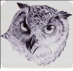 Owl by pauloraphael on deviantart. Owl Tattoo Drawings, Pencil Art Drawings, Abstract Drawings, Bird Drawings, Animal Drawings, Drawing Sketches, Owl Art, Bird Art, Lechuza Tattoo