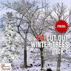 Packs  - CUT OUT - Vegetation - Trees - CUT OUT WINTER TREES PACK 1 00036 | Sketchuptexture
