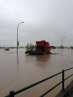 (Twitter / Jill_Croteau: Only in Alberta. High river ...