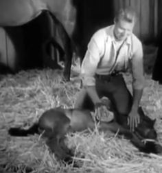 A newborn at the Sherman Ranch John Smith Actor, The Rifleman, Best Hero, The Virginian, Old Tv Shows, Good Ole, Old West, Wonders Of The World, Bobby