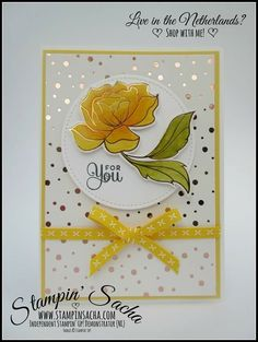 stampin up spring cards Stampin Up Karten, Paper Cards, Foil Paper, Birthday Photo Booths, Beautiful Handmade Cards, Stamping Up Cards, Get Well Cards, Pretty Cards, Card Maker