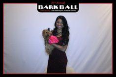 Dogs had howling good time at Bark Ball for Washington Humane Society June 14 - Washington DC Art Travel   Examiner.com