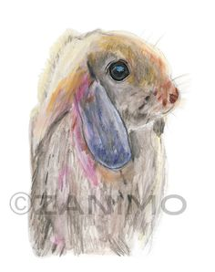 items similar to the rabbit print of an original colored pencil drawing 5x7 8 x 10 print of a rabbit nursery wall decor sweet drawing of a rabbit on