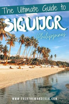 Discover the Ultimate Guide to Siquijor in the Philippines. Cambugahay falls and white pristine beaches. We also share our favourite place, the Tubod Marine Sanctuary. #Philippines #siquijor #siquijortravelguide #cambugahayfalls Asia Travel, Travel Tips, Wander, Philippines, Beaches, Waterfall, Marine Reserves, Order Of The Day, Snorkelling