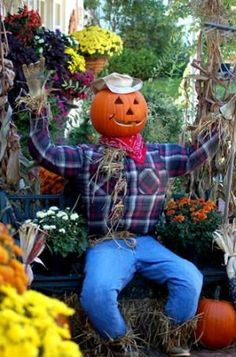 Ideas for Making Scarecrows: Garden Scarecrow With Jack-o'-Lantern Head Make A Scarecrow, Halloween Scarecrow, Fete Halloween, Halloween 2020, Holidays Halloween, Halloween Decorations, Scarecrow Ideas, Fall Decorations, Halloween Stuff
