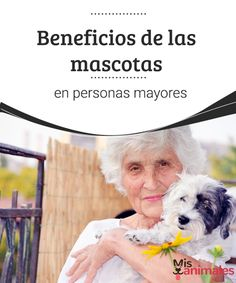 Beneficios de las mascotas en personas mayores  Las personas mayores que tienen mascotas reciben cientos de beneficios a su salud mental y física. Entra en este artículo y entérate en este artículo cuáles son esas ventajas.