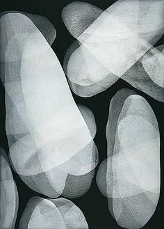 artnet Galleries: Blanco Sobre Negro 7 by Michelle Concepción