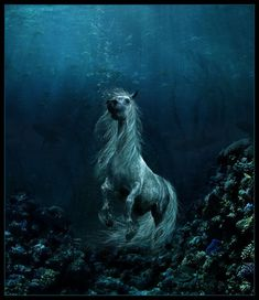 Kelpie - a water horse from Celtic mythology thought to haunt the rivers and lochs of Scotland and Ireland