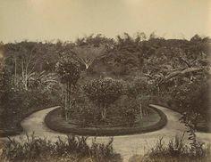 PLAZA EL CALVARIO CARACAS 1880
