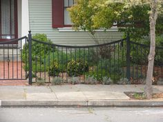 Scallop Iron Fence