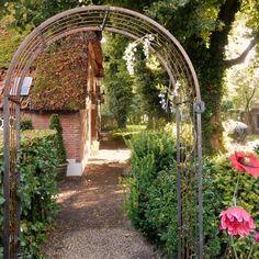 How Does Pergola Work Refferal: 4639620402 Diy Organisation, Garden Arches, Diy Pergola, Clematis, Yard Art, Bird Houses, Wind Chimes, Paths, Backyard
