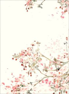 Pink white cream illustrated watercolour blossoms floral iphone wallpaper p