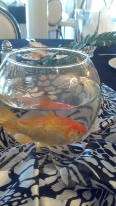 Goldfish make a fun luncheon/banquet table centerpiece.