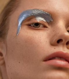 Beauty / Make up / Eyes / Silver