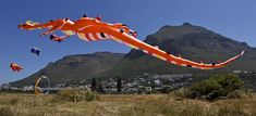 View event details for Cape Town International Kite Festival 2019 and order tickets online now. Use Africas fastest growing ticketing service to book tickets for Cape Town International Kite Festival Family Weekend, Long Weekend, Kite Making, Sun Protection Hat, Weekends Away, Online Tickets, Nature Reserve, Cape Town, Dog Owners