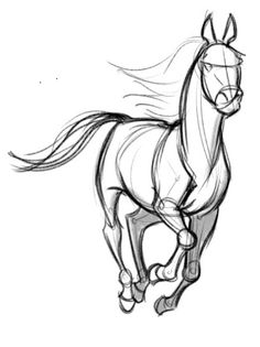 Mirror Image of Concept Design Sketches – The Art of David Boudreau – Animal Drawing Horse Drawings, Bts Drawings, Art Drawings Sketches, Realistic Drawings, Animal Drawings, Horse Sketch, Animal Sketches, Art Studies, Horse Art
