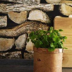 Trendigt med trä – satsa på naturlig stil! | Leva & bo | Expressen