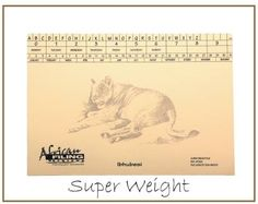Super weight - Lion (Ibhubesi) - AFSWF300 capacity 300 sheets. African Tree, Baobab Tree, Teacher Organization, Filing, Lion, Leo, Lions