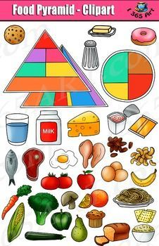 Food Pyramid Clipart Set - Kid's Health Education by I 365 Art - Clipart 4 School Nutrition Education, Kids Nutrition, Nutrition Classes, Nutrition Store, Nutrition Guide, Food Pyramid Kids, Art For Kids, Crafts For Kids, Food Clipart