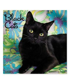 Take a look at this Just Black Cats 18-Month 2018 Wall Calendar today!