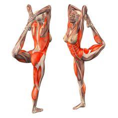 Standing lord of dance with both hands: left foot grab - Maha Natarajasana left - Yoga Poses   YOGA.com