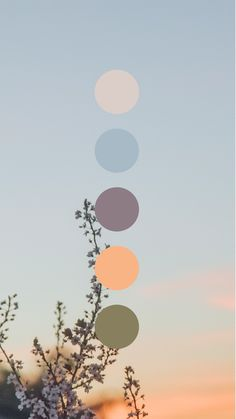 Brand color palette inspiration designed by Amari Creative, branding and design studio. Colour Pallette, Color Combos, Color Schemes, Taupe Color Palettes, Sunset Color Palette, Spring Color Palette, Earthy Color Palette, Sunset Colors, Instruções Origami