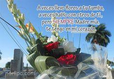 A veces llevo flores a tu tumba, a veces hablo con otros de ti, pero SIEMPRE Madre mía, te tengo en mi corazón