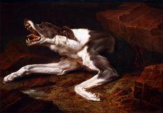 Paul de Vos. 1610-1690. Bruxelles. Le chien blessé.  Angers.  Paul de Vos. 1610-1690 Brussels. The injured dog. Angers.