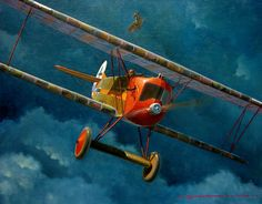 1918 06 Jasta 11 Fokker DVII Willy Gabriel - Steve Anderson