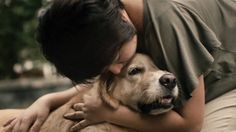 Mothers - Pedigree #LOVE #Doglover #UnconditionalLove