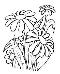 Coloringsco Grass Coloring Pages