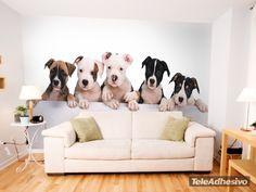 Papier peint vinyle Chiots Bulldog