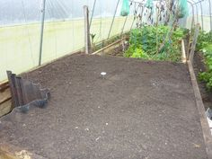 Hotbeds are a mixture of manure, straw, poultry bedding... anything that will heat up as it decomposes. You can then grow tender vegetables like sweet peppers and French beans much earlier in the season without a heater.