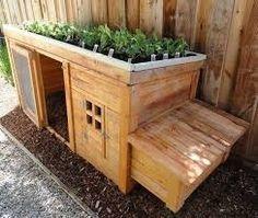 Konijnenhok met planten op t dak! Geniaal!