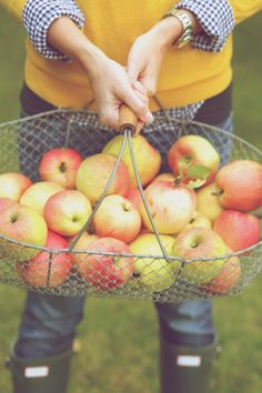 fresh apple picking and hunter boots. love fall!