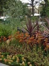 Image result for sustainable australian native gardens