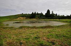 SIARAM :: Zonas Húmidas :: Lagoa de Canas