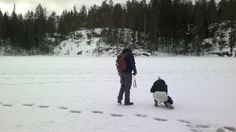 Absolute advantage of winter: hiking on top of the lakes and spotting animal trails