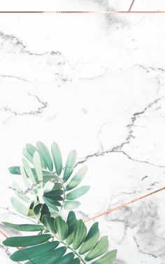 Simple, clean, minimalist, white, marble I phone wallpaper with rose gold detailing and green palm leafs