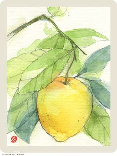 "Little Sunny Studio: 30 Paintings in 30 Days: No. 17 ""Lemon Tree"" Watercolor with Pencil"