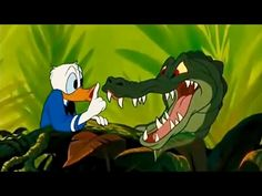 Disney movies Classics - Donald Duck Cartoons full Episodes & Chip and Dale, Mickey, Pluto, etc! - YouTube
