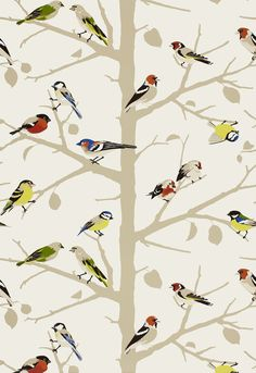 Bird wallpaper for small spaces. Schumacher. Use on ceiling of powder room?!